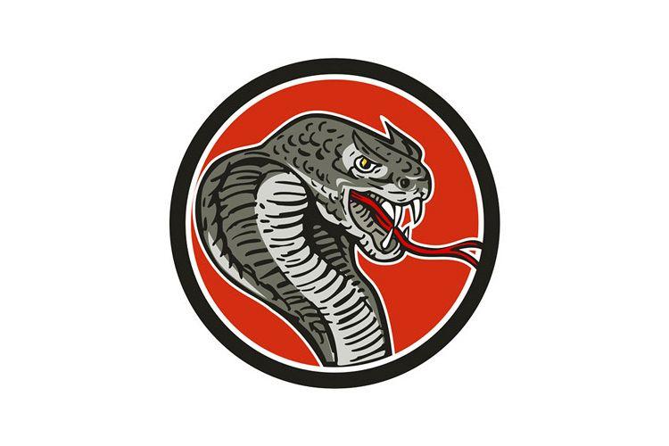 Cobra Viper Snake Circle Retro example image 1