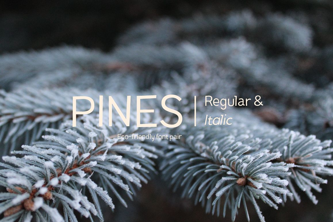 Pines Regular & Pines Italic example image 1