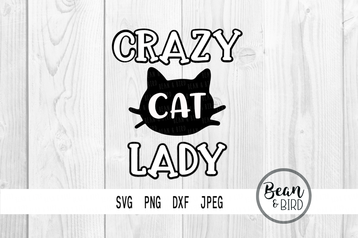 Crazy Cat Lady example image 1