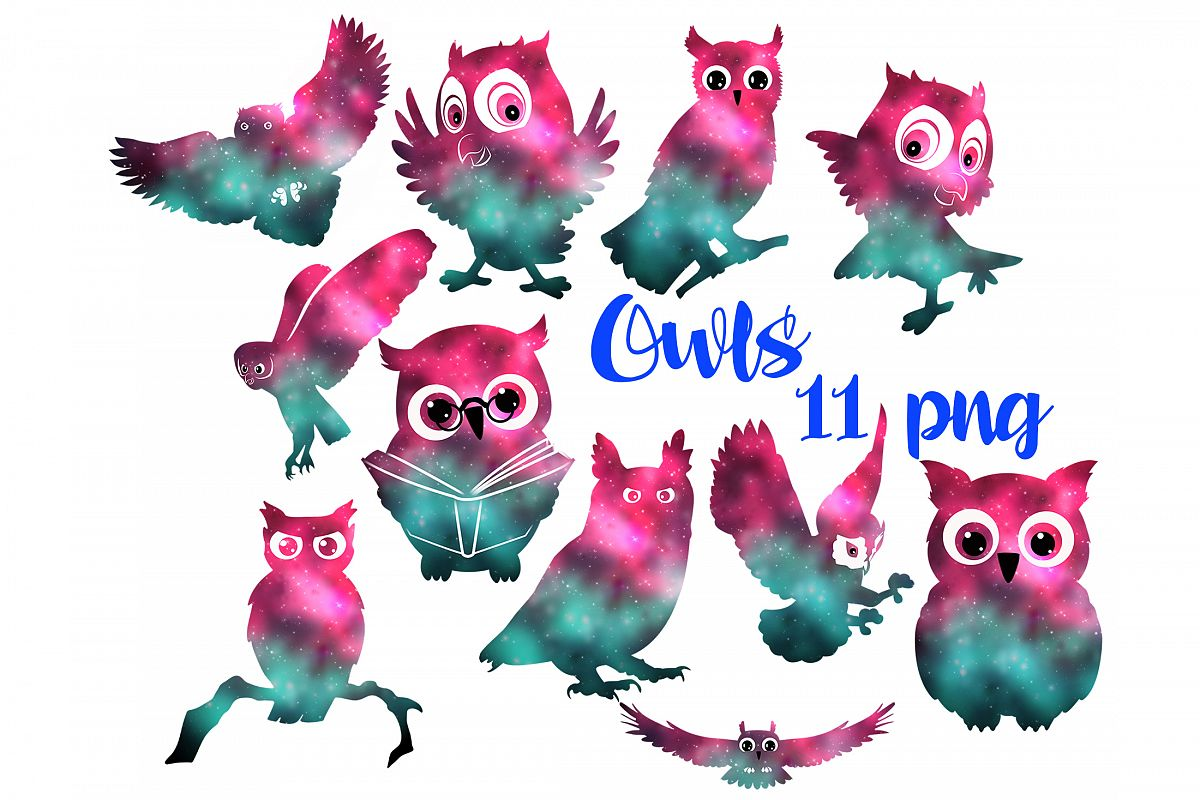 Owls example image 1