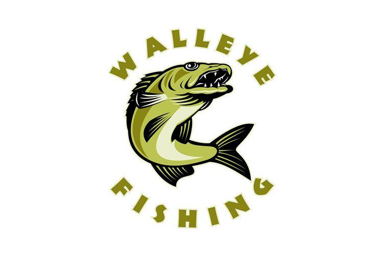 Walleye fish jumping Sander vitreus