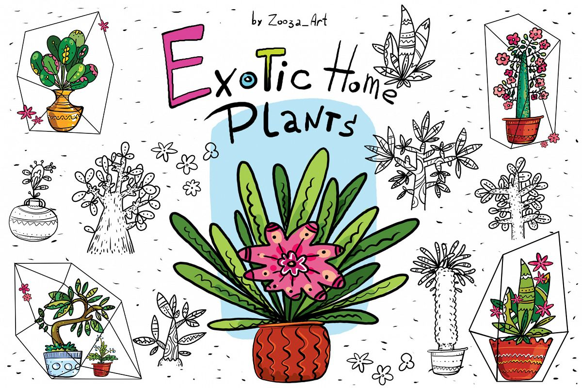 Exotic Home Plants - prints and cards example image 1