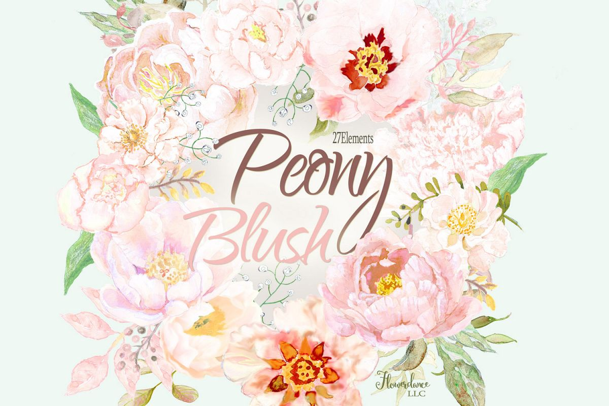 Watercolor peony. Blush floral elements clipart