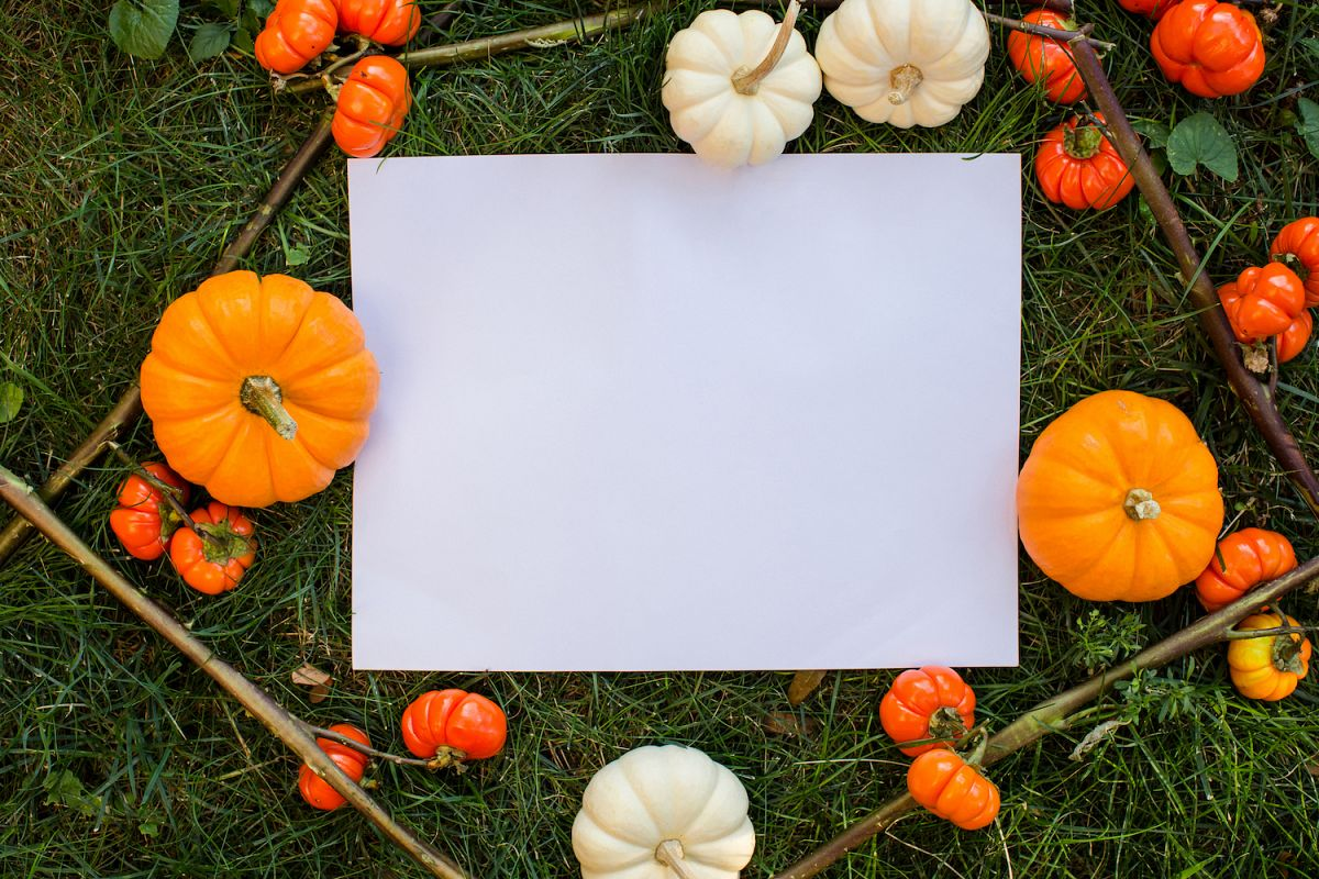 A Lot of different types of pumpkin in great composition for your mockup example image 1