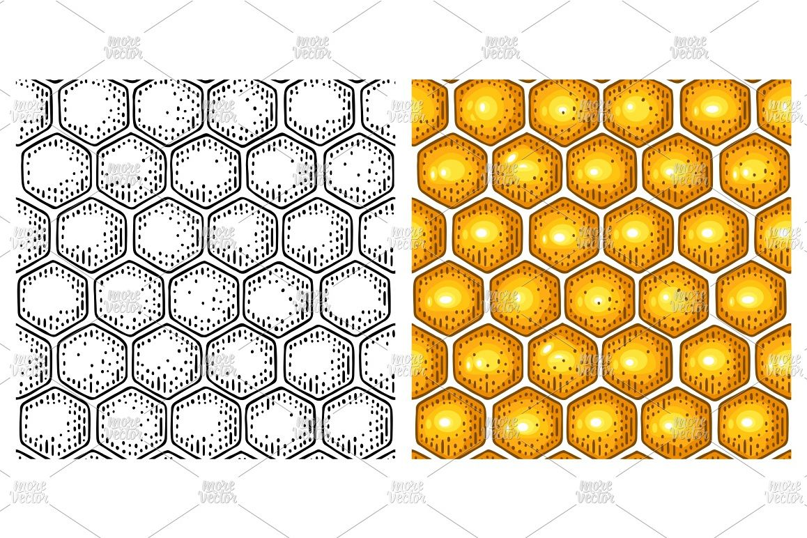 Honey Seamless Pattern honeycomb Vector color engraving example image 1