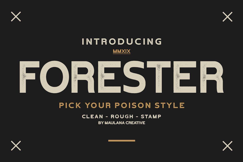 Forester Vintage Sans Serif example image 1