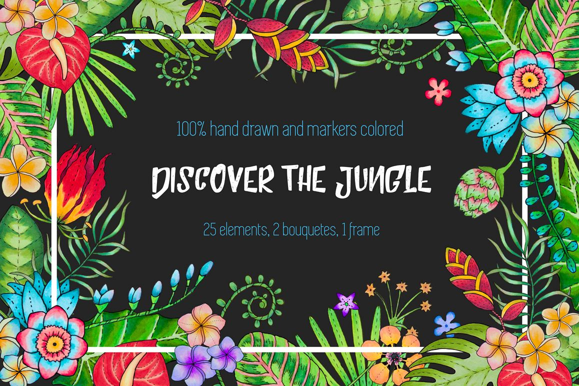 Discover the tropical jungle example image 1