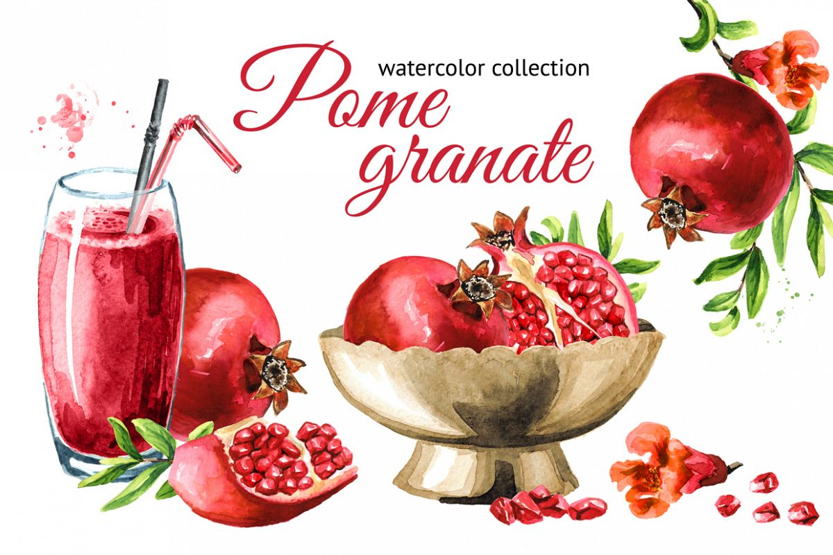 Pomegranate. Watercolor collection example image 1