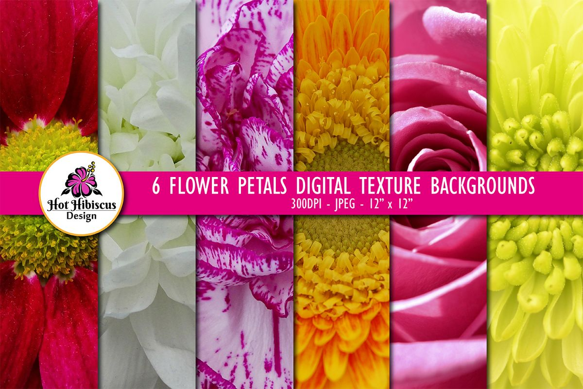 6 Closeup Flower Petals Digital Paper Texture Backgrounds example image 1