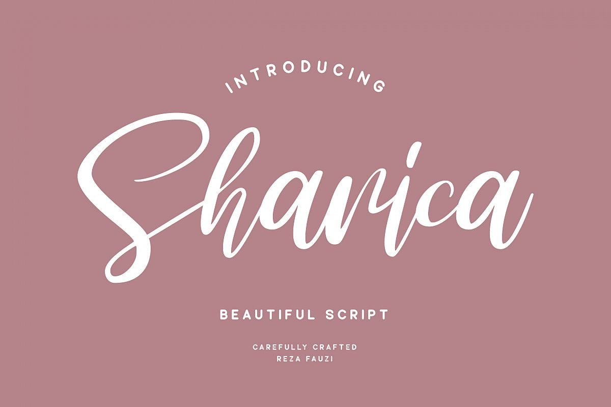Sharica - Script Font example image 1