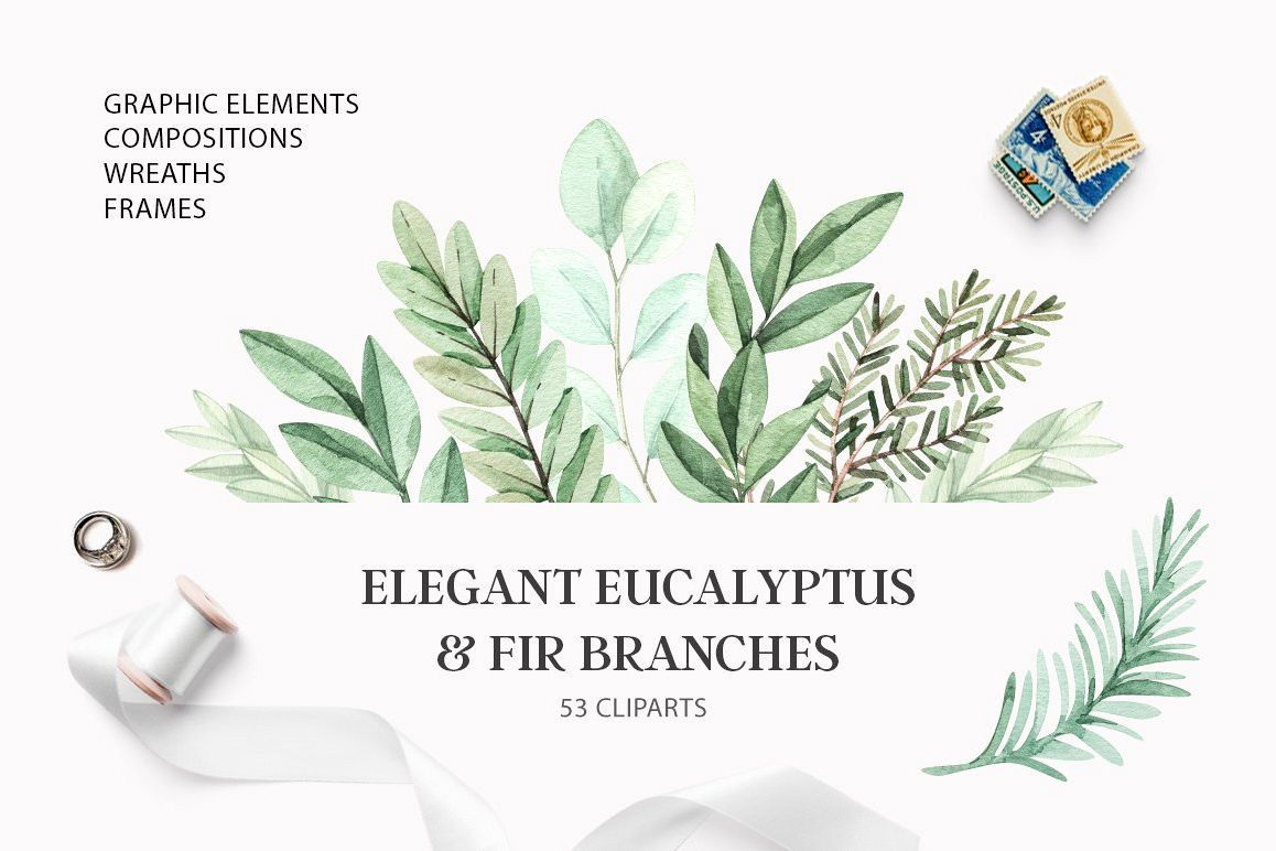 Elegant eucalyptus & fir branches. Watercolor collection example image 1