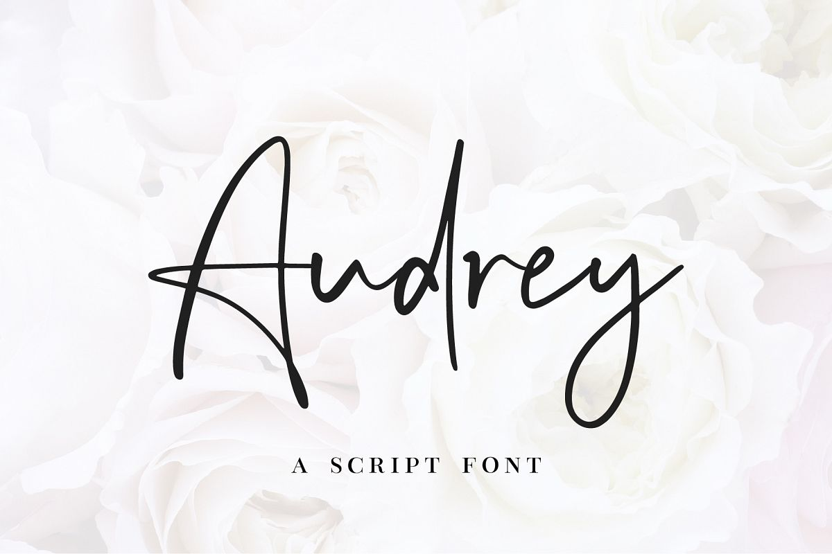 Audrey - A Script Font example image 1