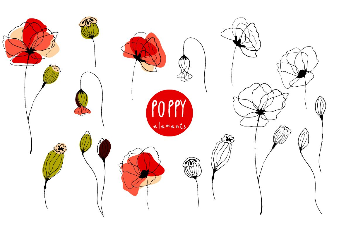Poppy. Elements & Pattern Swatches example image 1