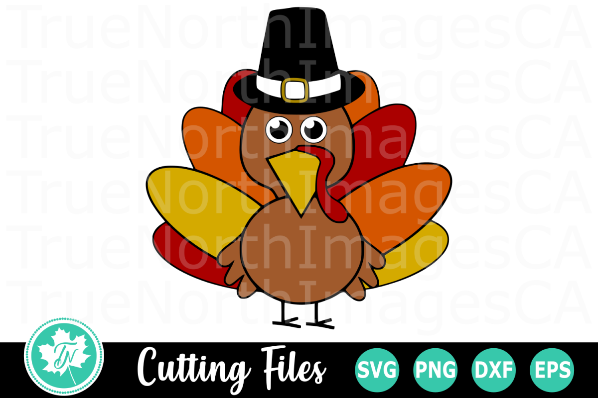 Turkey with Hat - A Fall SVG Cut File example image 1