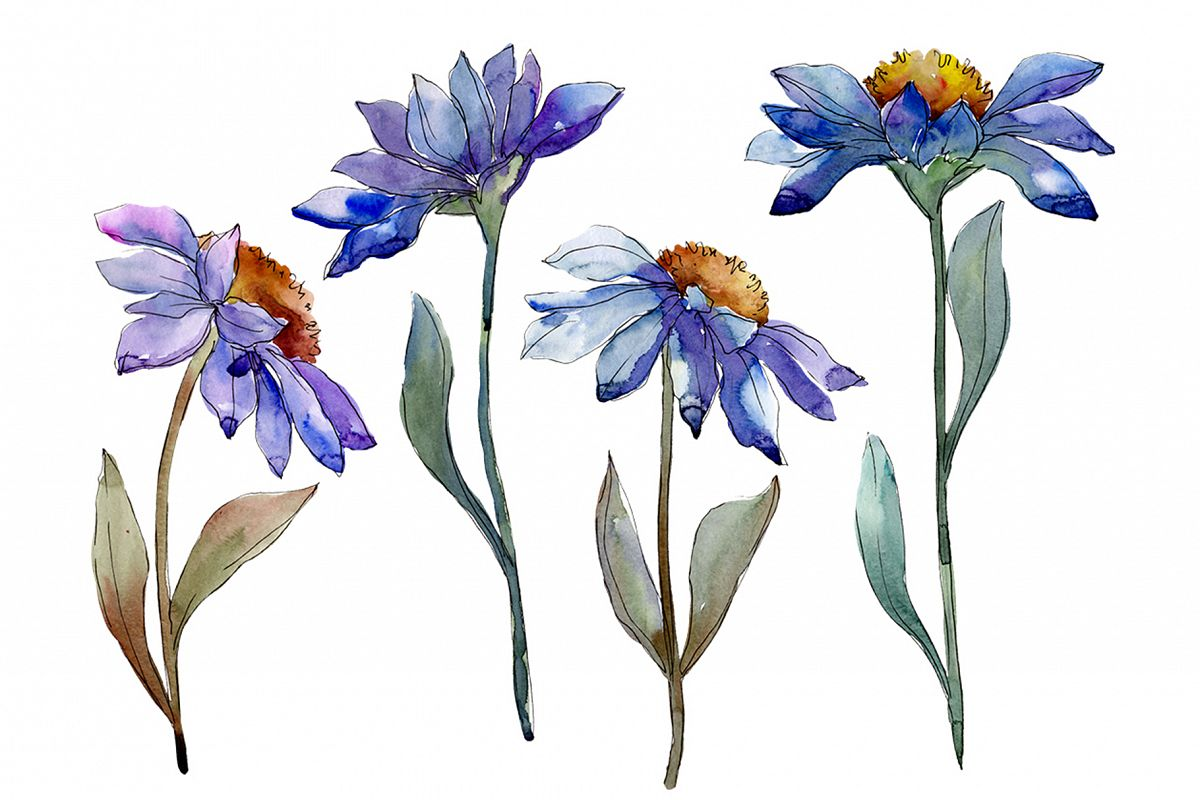 Bouquet blue of asters and daisies watercolor png example image 1