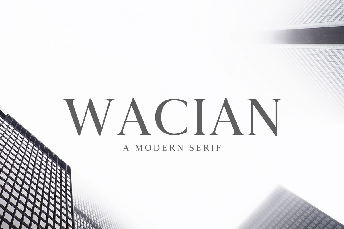 Wacian Serif Font Family Pack example image 1