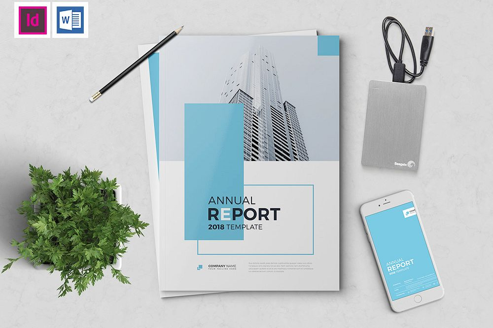 The Blue Annual Report example image 1