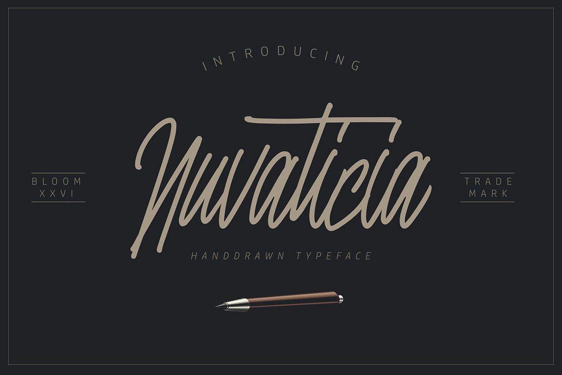 Nuvanticia Typeface + free bonus 43 Vector Skull example image 1