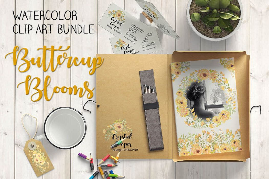 Watercolor clip art bundle: 'Buttercup Blooms' example image 1