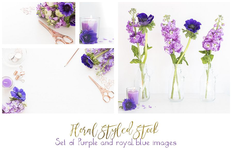 Rose gold with royal blue anamones and purple hyacinths styled desktop bundle of 5 images example image 1