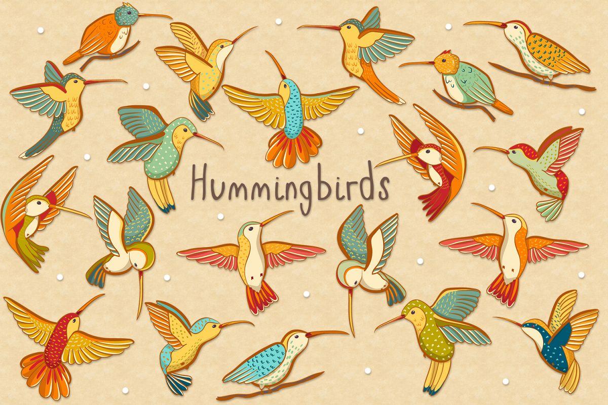 Hummingbirds example image 1