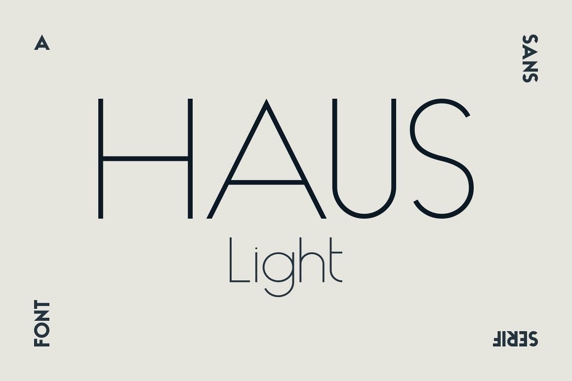 HAUS Sans Light example image 1