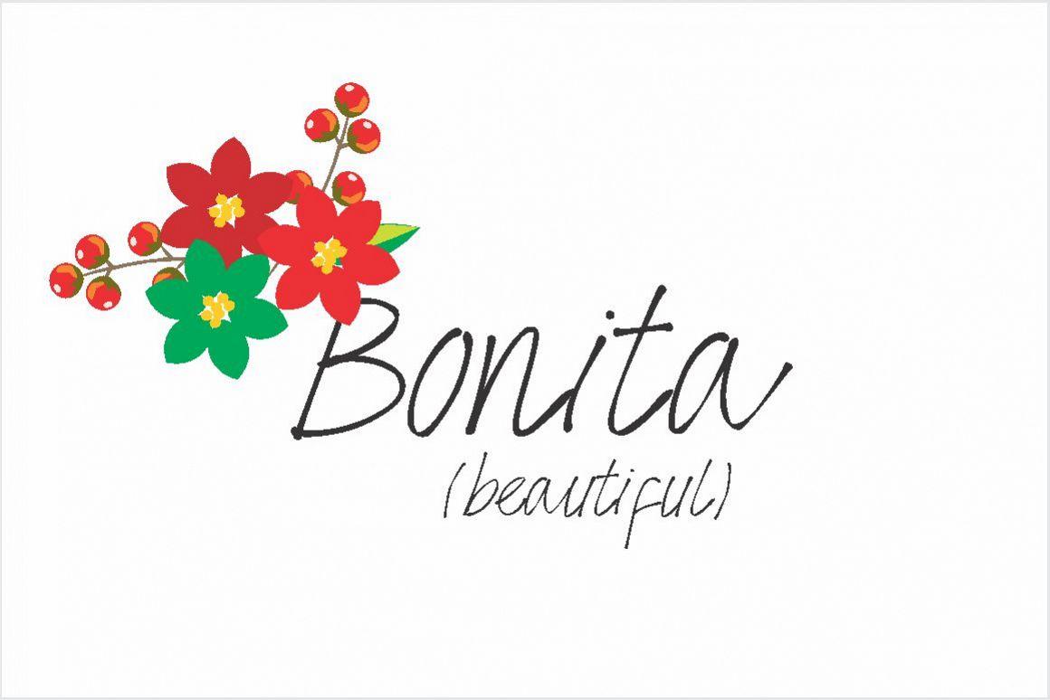 Bonita Font example image 1