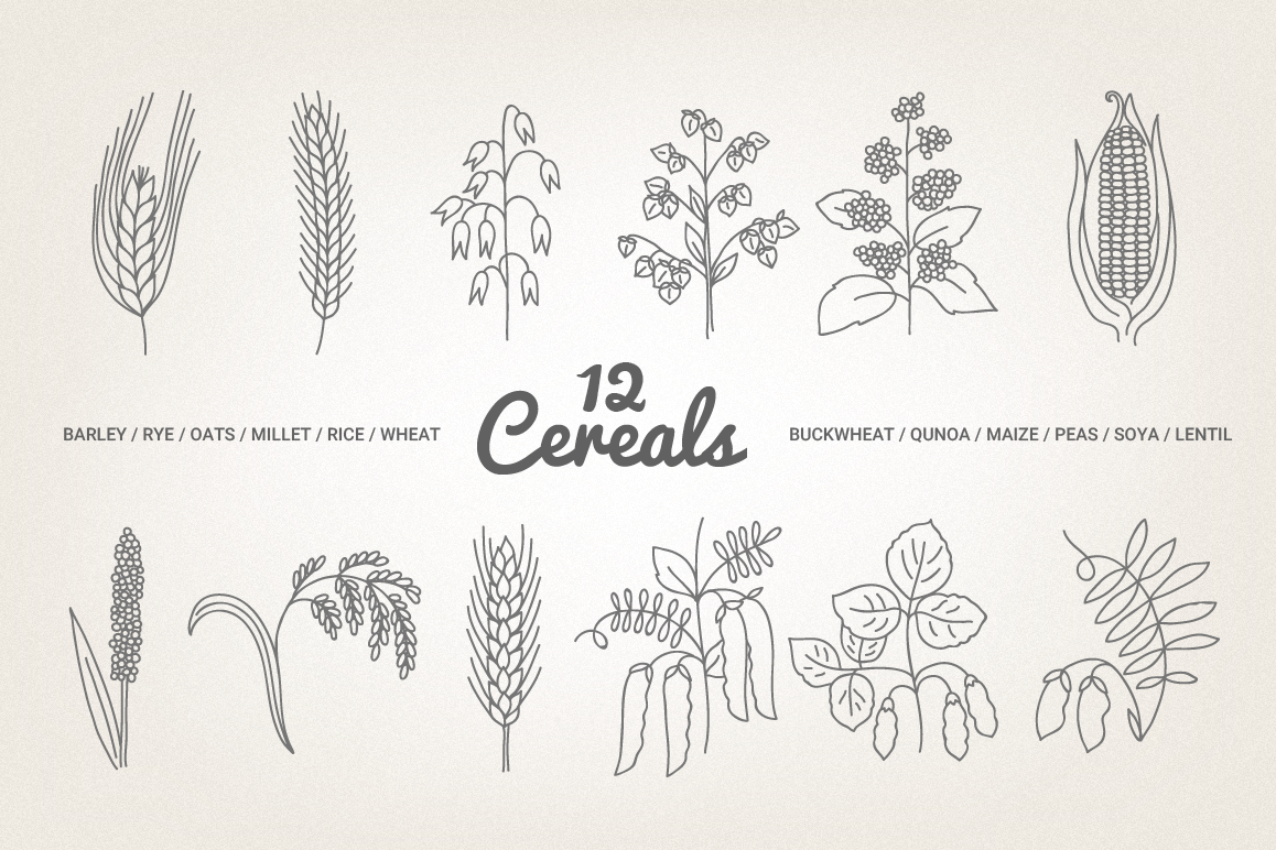 12 Cereals - Illustration & Patterns example image 1