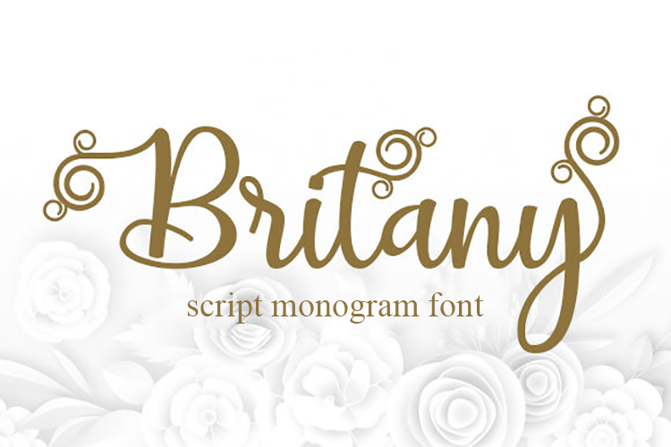Britany Script Monogram Font example image 1