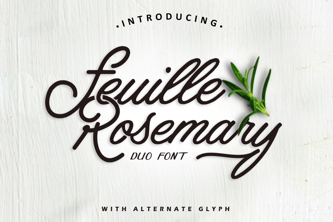 Feuille Rosemary example image 1