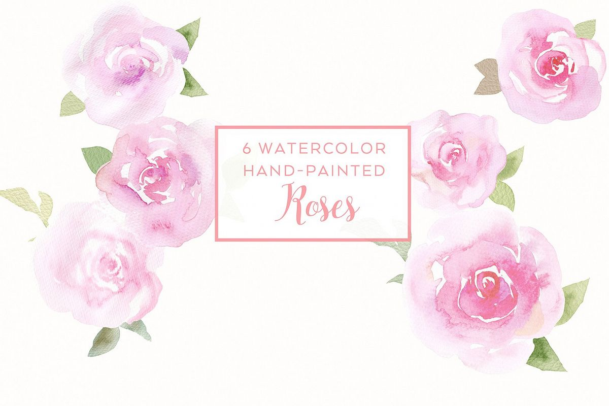 6 watercolor rose illustrations example image 1
