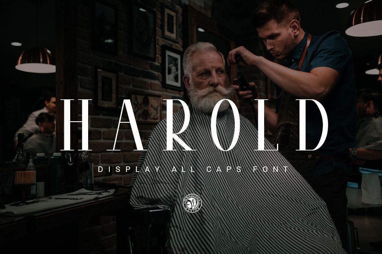 Harold example image 1