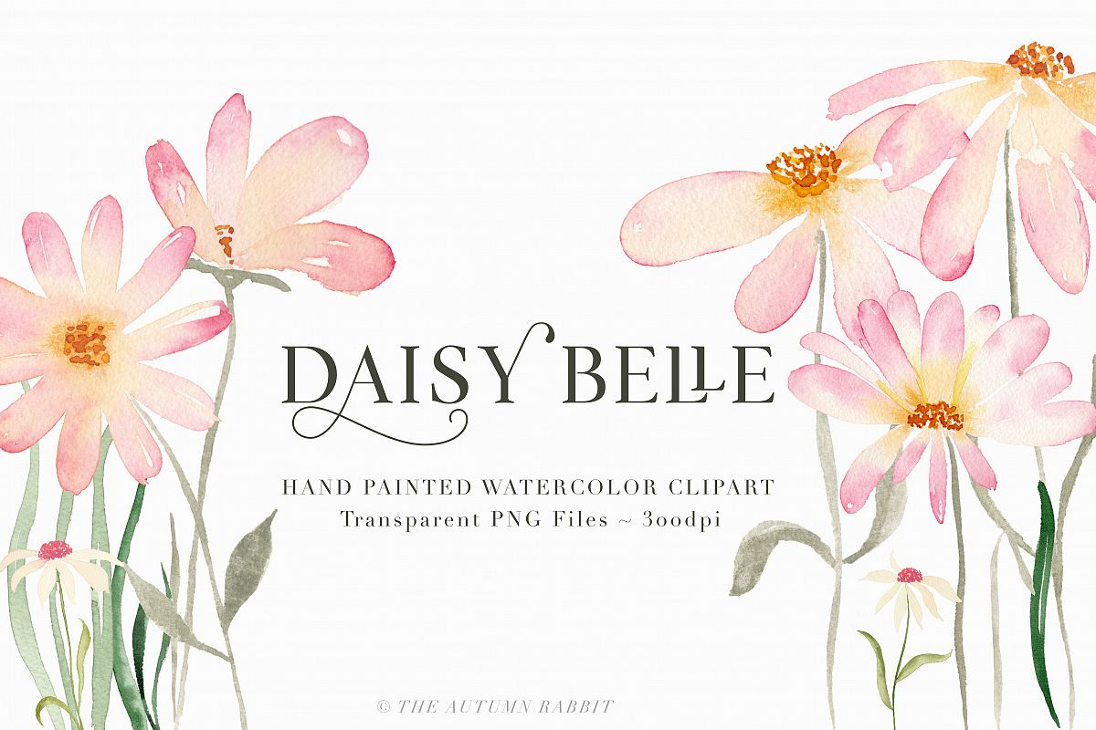 Watercolor Floral Clipart - Daisy Belle example image 1