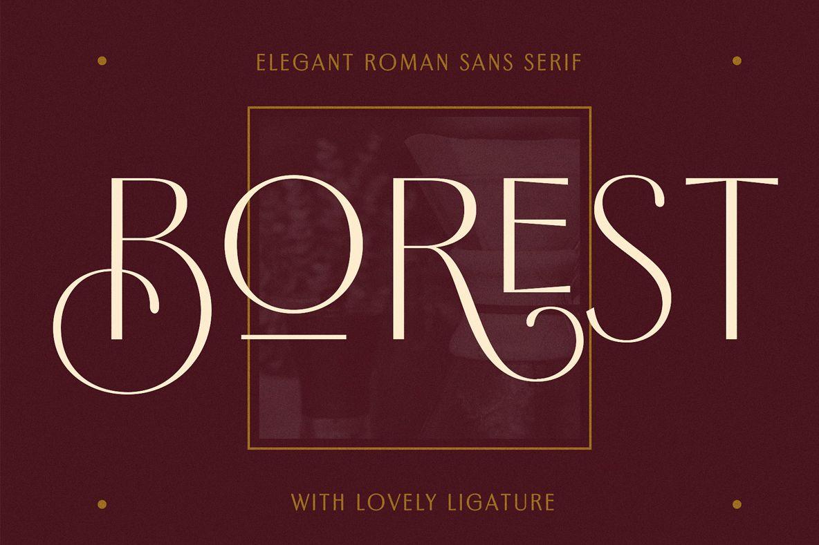 Borest - Elegant Roman Sans Serif example image 1