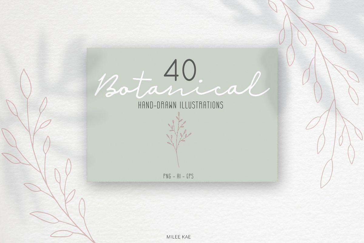 40 Modern Botanical Illustrations example image 1