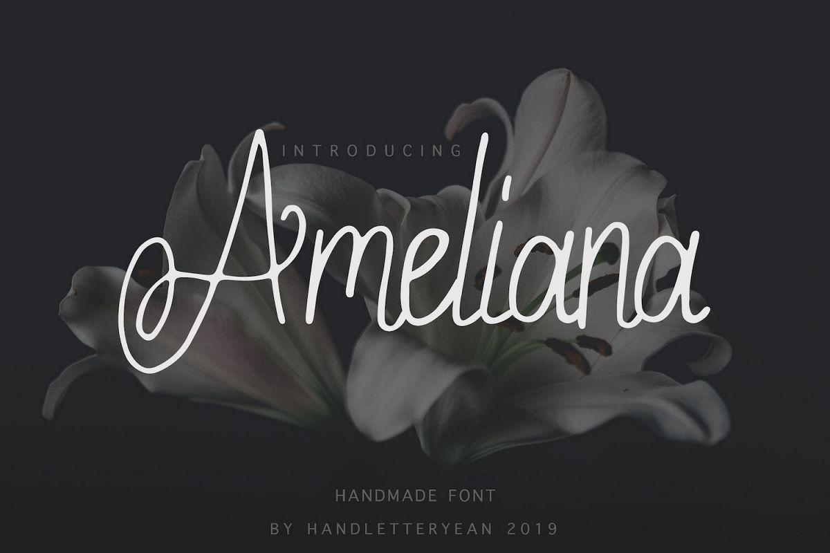 Ameliana example image 1