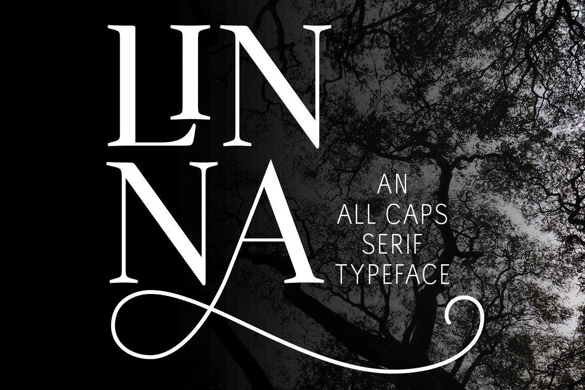 Linna example image 1