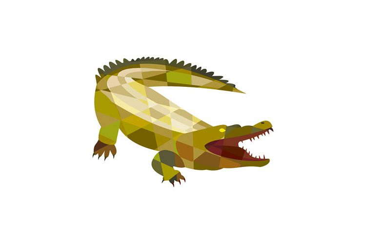 Alligator Crocodile Gaping Mouth Low Polygon example image 1