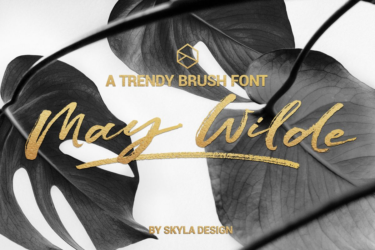 Trendy brush font, May Wilde example image 1