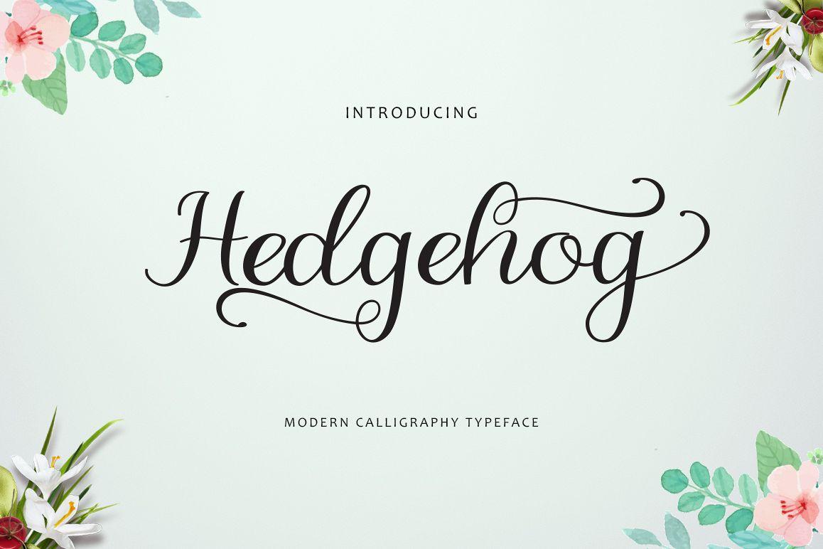 Hedgehog example image 1