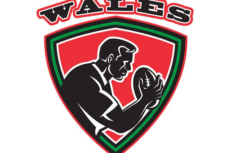 Rugby player Wales shield example image 1