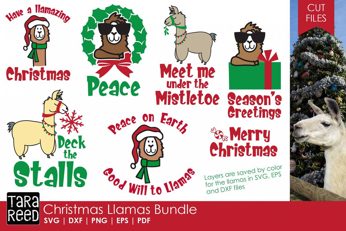 Christmas Llama.Christmas Llamas Christmas Svg And Cut Files For Crafters
