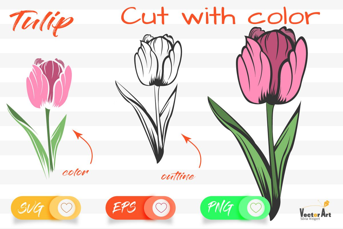 Tulip Flower - Cut File with 2 Layers example image 1