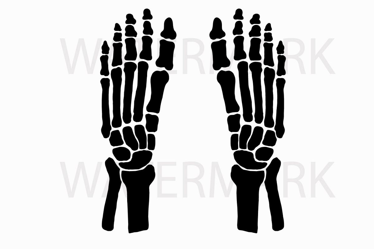 Skeleton Feet Left And Right Svgjpg Design Bundles