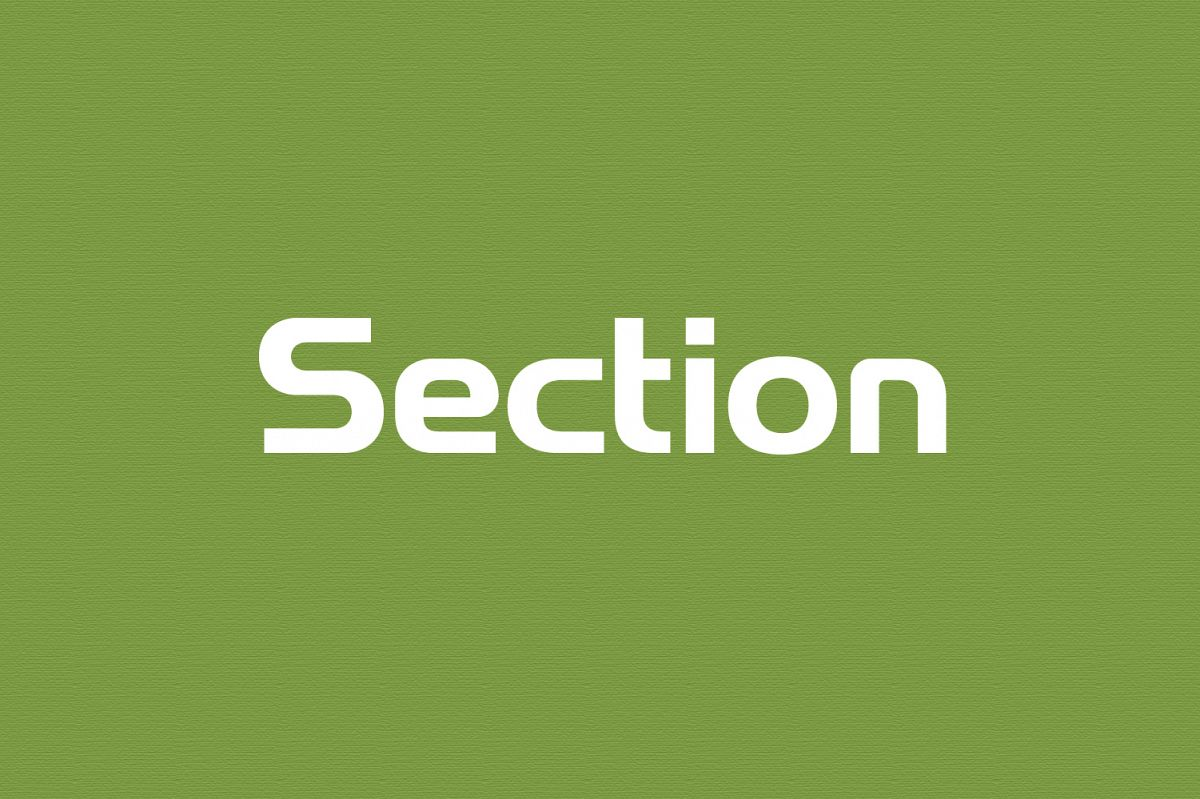 Section - Wordmark Font example image 1