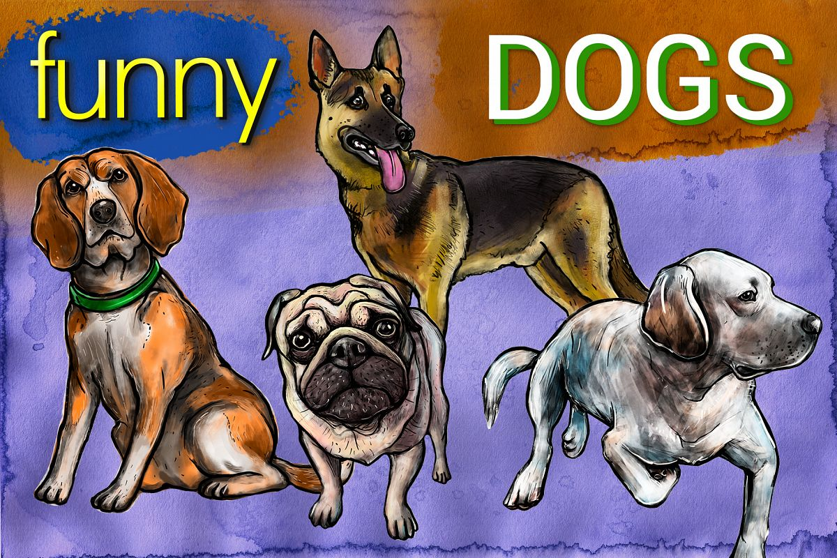 Funny dogs example image 1