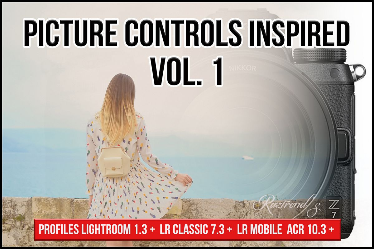 Picture Controls Inspired Vol. 1 profiles LR 7.3 ACR 10.3 example image 1