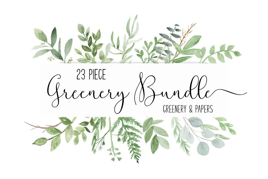 Watercolor Greenery Botanical Clip Art PNG Bundle Example Image