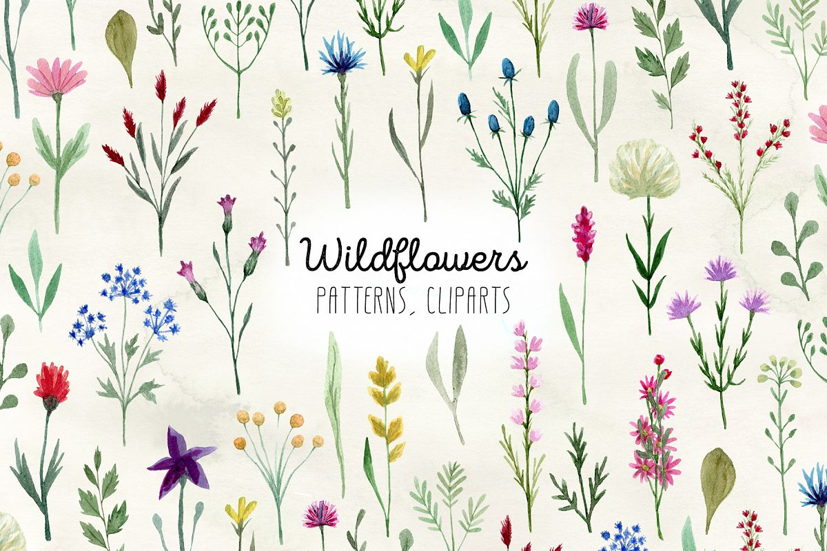 Watercolor Wildflowers example image 1