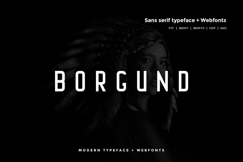 Borgund - Modern Typeface WebFont example image 1